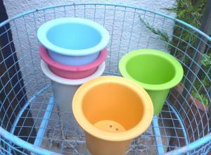 P1240194-2 桜高校の植木鉢
